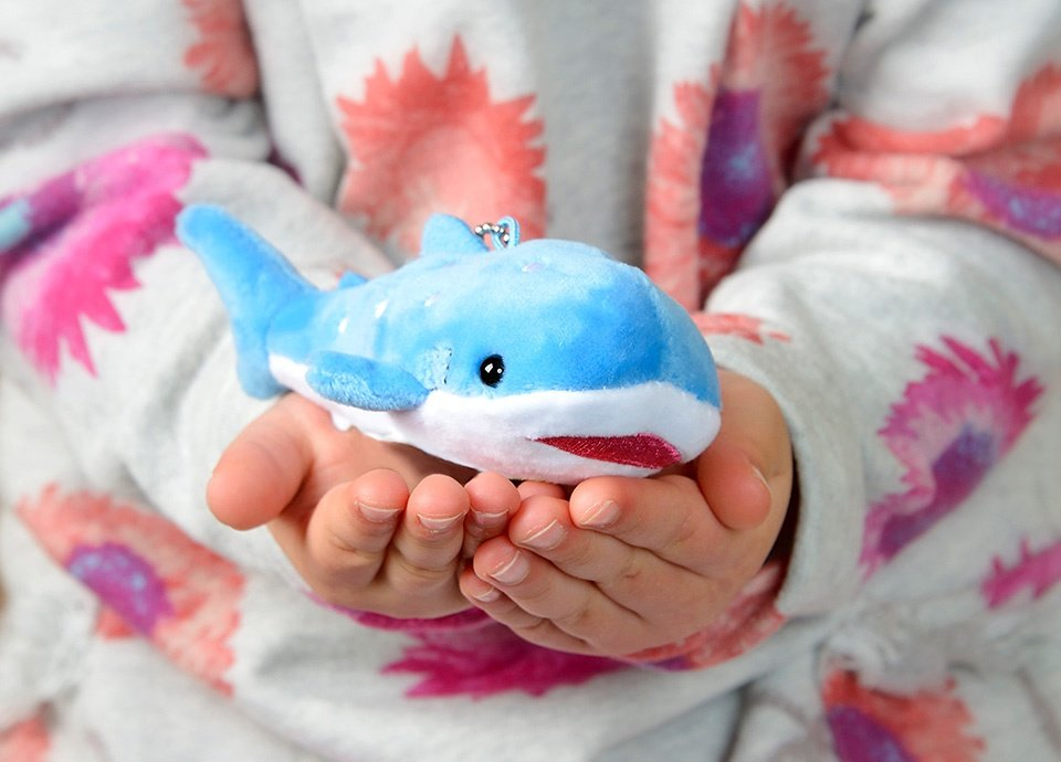 世界最大級の水族館へ行こう!海遊館入場券付