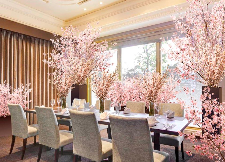 開業25周年記念「SAKURAルームでお花見パーティプラン」